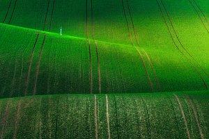 South Moravia. Hilly field TIF