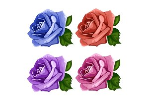 Rose buds blue, pink, purple and red