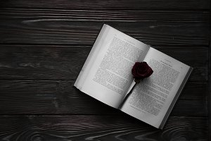 An open book with a red rose flower on it. Wooden background.