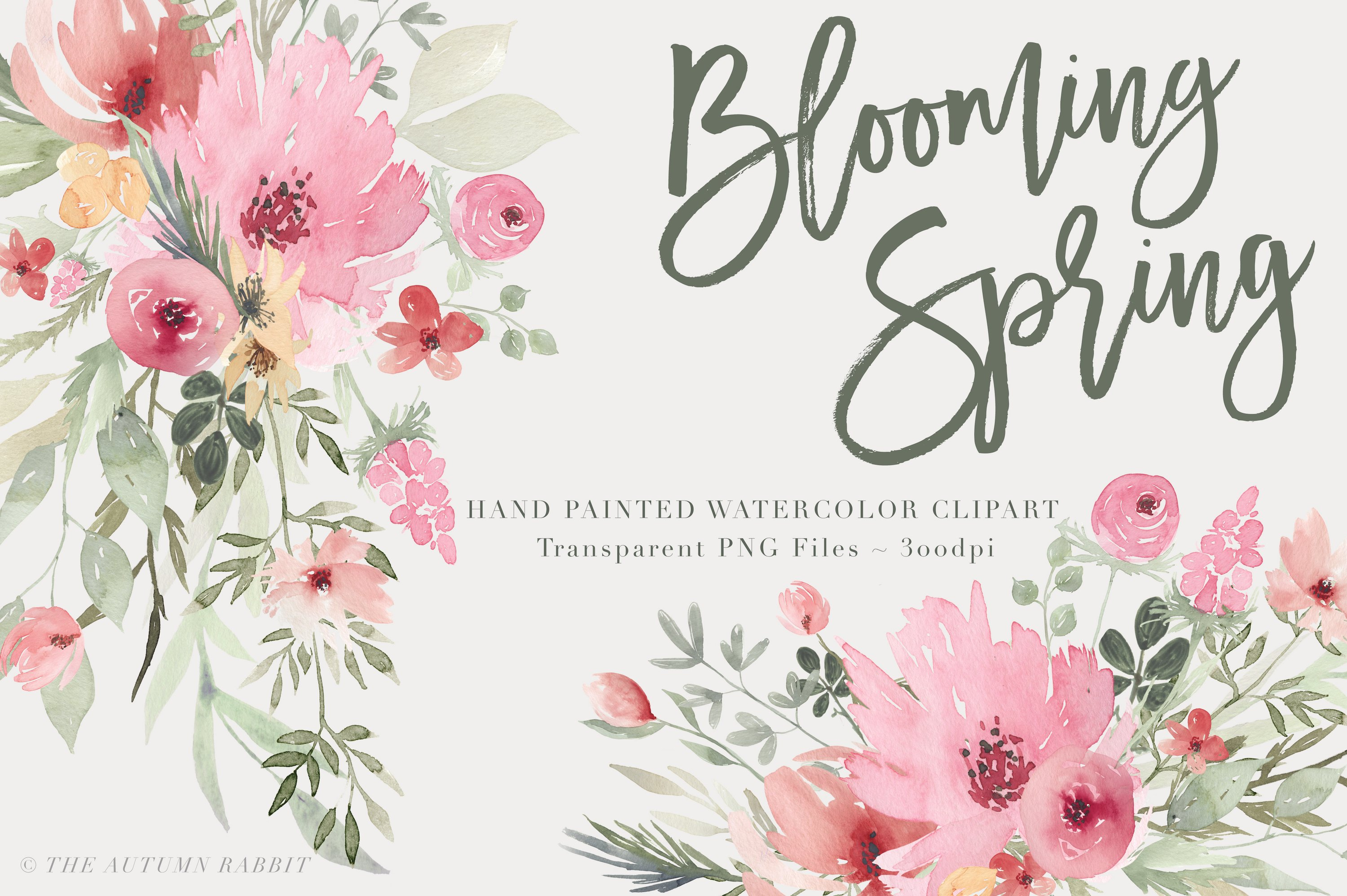 Blooming Spring Watercolor Flowers Illustrations Creative