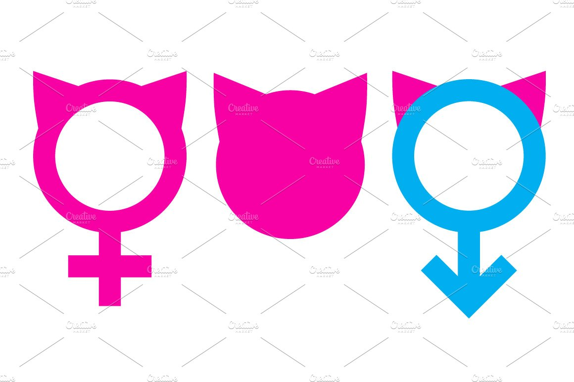 Womens March Vector Icons Bonus Icons Creative Market