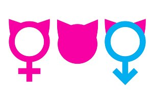 Women's March Vector Icons + Bonus