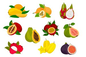 Exotic tropical fruit isolated icon set
