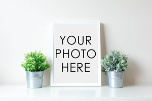 White Frame With Two Plants