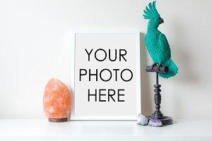 White Frame With Parrot & Salt Lamp