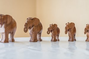 Carved wooden elephants on table