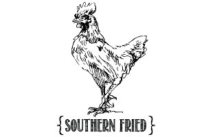 Southern Fried Chicken Vector