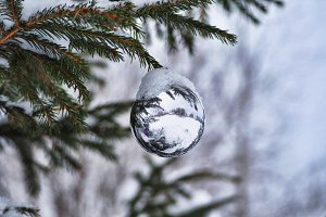 White Christmas ball on snow-covered fir branch