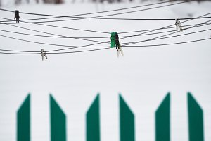 Green fence and clothesline