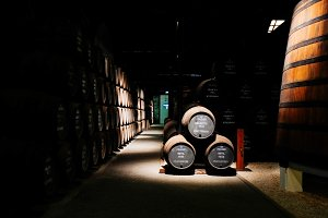 Port barrels in a cellar in Portu