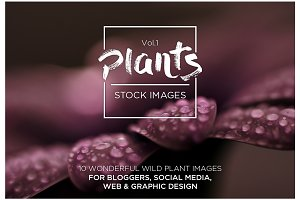 Plants Vol.1