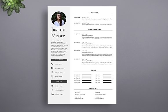 1 Page Professional Resume Template