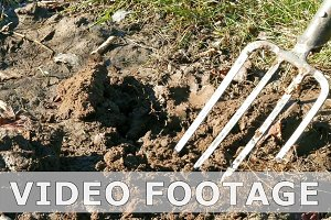 Digging spring earth soil in garden with pitchfork