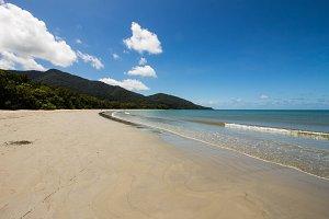 rainforest meets beach