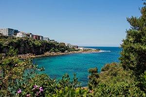 coastal walk view at sydney