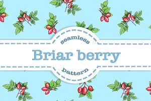 SALE Briar berry seamless pattern