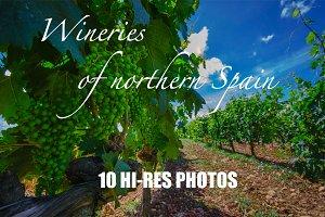 Photo set Wineries of Northern Spain