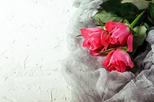 Pink roses bouquet over white background. Top view with copy space.