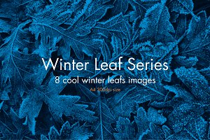 Winter Leaf Series