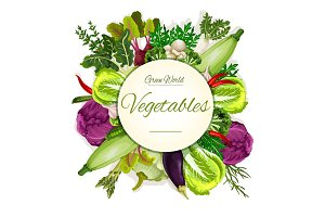 Healthy vegan vegetable food banner