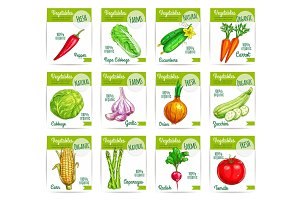 Vegetable food on card or sale tag, labels