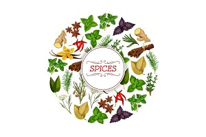 Banner for seasoning, herb or spice food