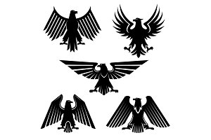 Set of hawk and eagle heraldic, falcon icons