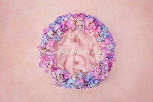 Newborn Photography Digital Backdrop