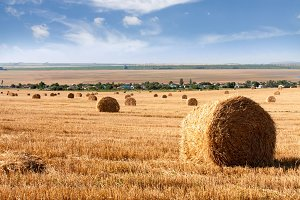 Summer Field with Hay Bales as background
