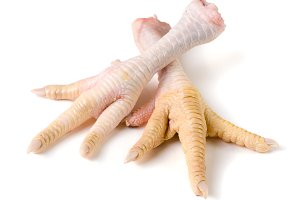 Two chicken feet isolated on white background
