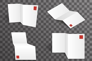 Paper white accordion