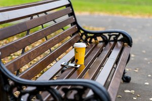 Close up of a bench in the spring or fall, is  cup  tea  coffee, breakfast idea, white smartphone, internet concept background for text, loneliness freedom