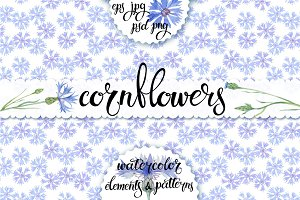 Cornflowers. Watercolor set.