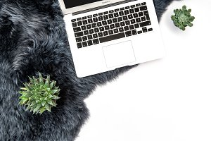 Laptop succulent plants Flat lay