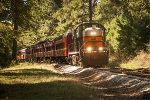 Vintage Train in the Woods