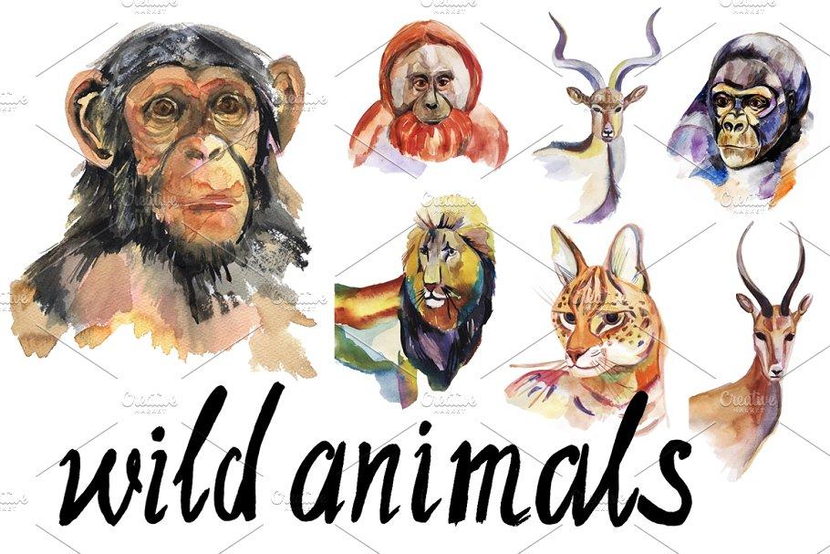 Watercolor wild animals set.