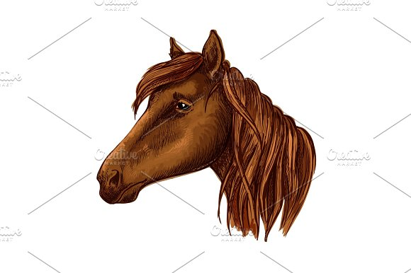 Brown graceful horse with sad eyes portrait