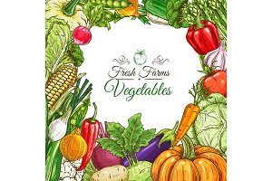 Vegetables poster, vegetarian menu design template
