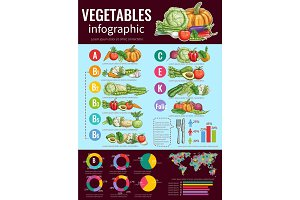 Vegetables infographic design, sketch style