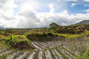 Bali panorama view. Indonesia.