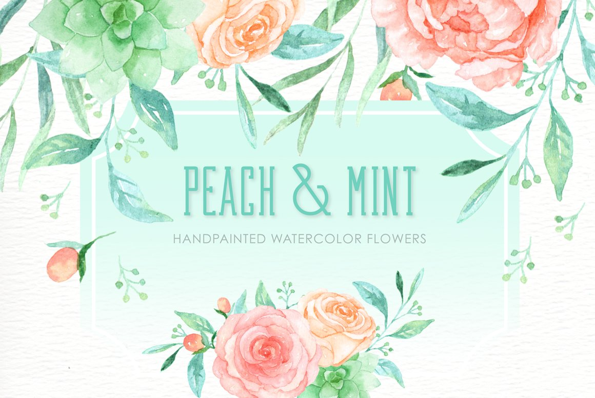 Peach and Mint Watercolor clipart ~ Illustrations ...