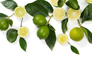 Branch with lime fruits.