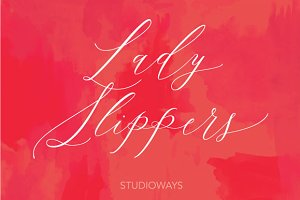 Lady Slippers 30% OFF!