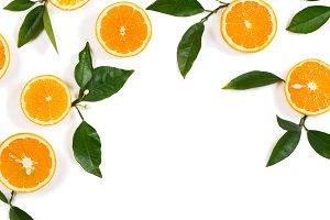Twigs with orange fruits.