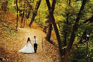 Newlyweds walk along the pass