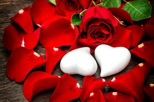 Valentines Day Red Roses Hearts