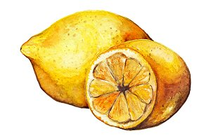 Watercolor lemon citrus fruit exotic