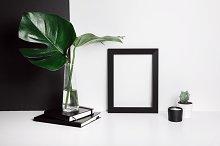 Monstera with frame on black & white