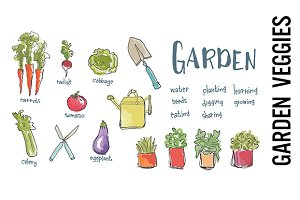 Garden Vegetables Watercolor Clipart