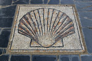 Scallop shell mosaic